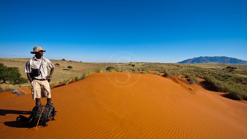 Nuit à la belle étoile dans le Namib, Trek Tok Tokkie, Namibie