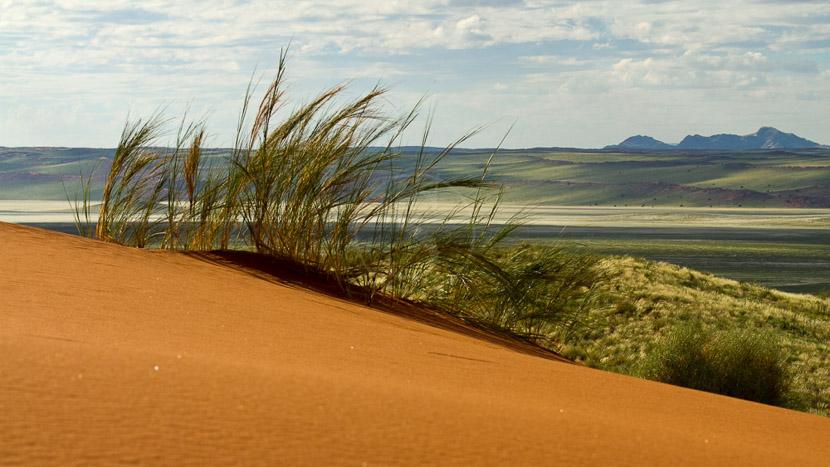 Nuit à la belle étoile dans le Namib, Paysage de la Namib Rand Nature Reserve, Namibie