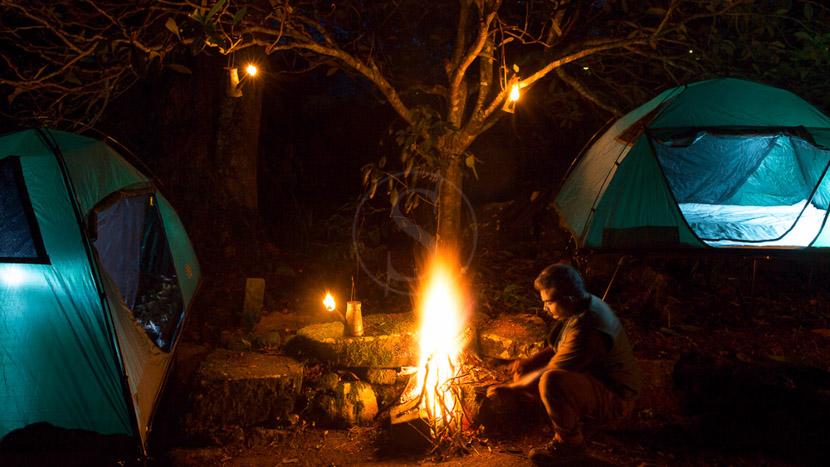 Madulkelle Tea and Ecolodge, Madulkelle Tea and Eco Lodge, Sri Lanka