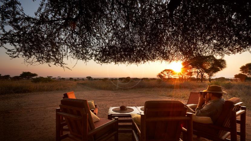 Oliver's Camp, Oliver's Camp, Tanzanie © Asilia