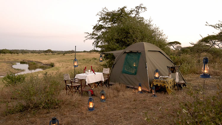 Oliver's Camp, Oliver's Camp/ Tanzanie
