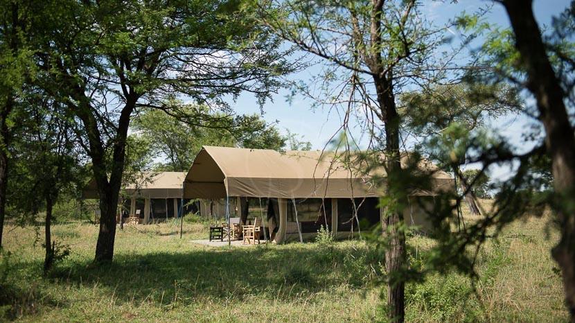 Ubuntu Camp, Ubuntu Migration Camp, Tanzanie © Asilia - Eliza Deacon