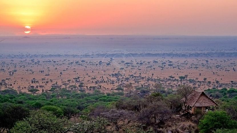 Serengeti Pioneer Camp, Pioneer Camp Serengeti, Tanzanie