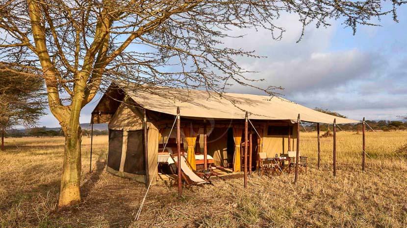 Legendary Serengeti Camp , Legendary Mobile Camp, Tanzanie © L. Expeditions