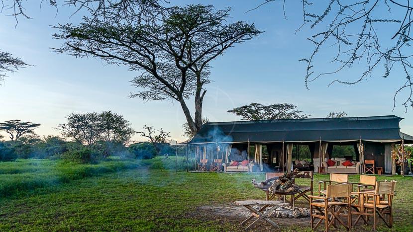 Lemala Ndutu Tented Camp, Mara et Ndutu Camps, Tanzanie © Lemala