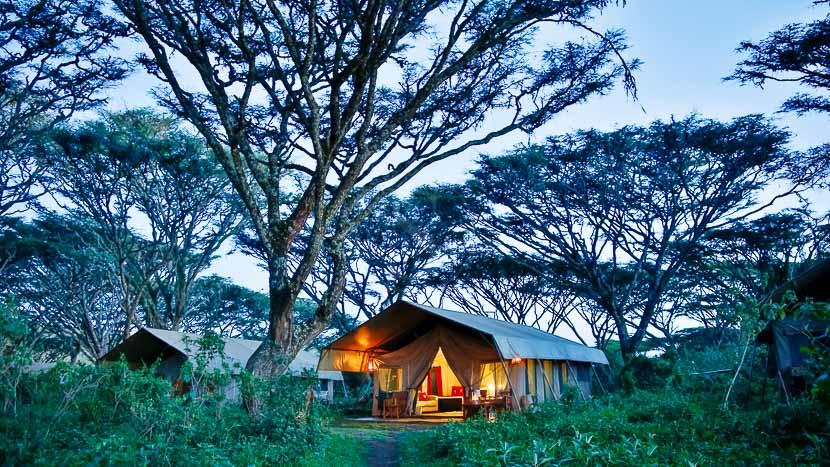 Lemala Ngorongoro Tented Camp, Ngorongoro Camp, Tanzanie © Lemala