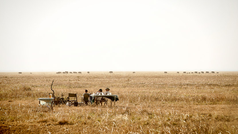Chada Katavi, Safari à Chada Katavi, Tanzanie © Nomad