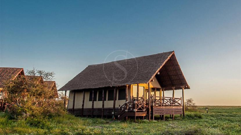 Lake Ndutu Luxury Tented Lodge , Lake Ndutu Luxury Tented Lodge, Tanzanie © Tns Hospitality