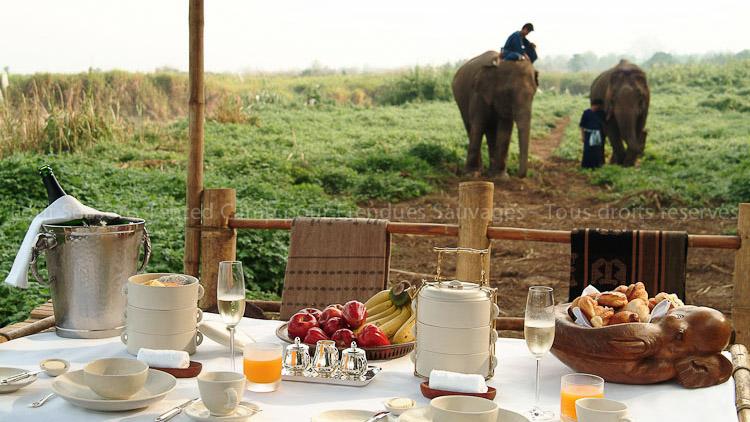Anantara Golden Triangle Elephant Camp & Resort , Four Seasons Tented Camp, Thaïlande