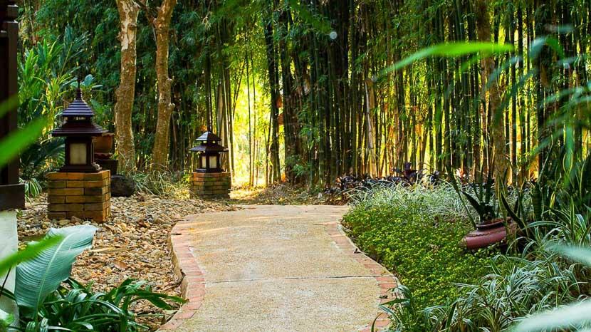 The Legend, Chiang Rai The Legend, Thailande