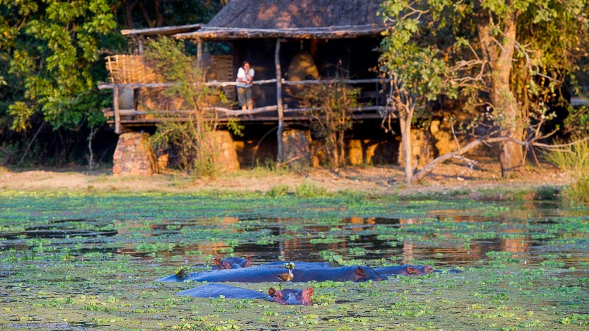 South Luangwa - Mfuwe Lodge, Mfuwe Lodge, Zambie © Bushcamp Company