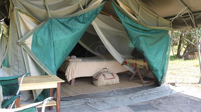 Shoebill Island Camp, Bangweulu, Bec en sabot dans Bangwelu, Zambie