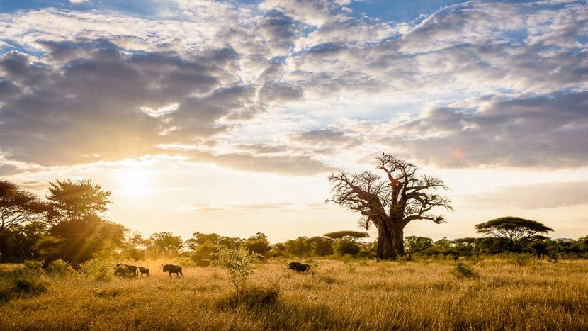 Singita Pamushana lodge, Singita Pamushana, Zimbabwe © Singita