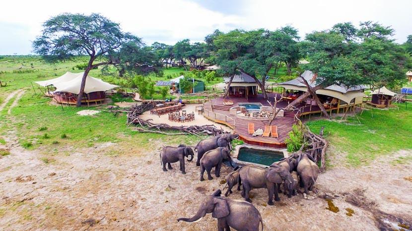 Somalisa Camp, Somalisa Acacia Camp, Zimbabwe © African Bush Camps