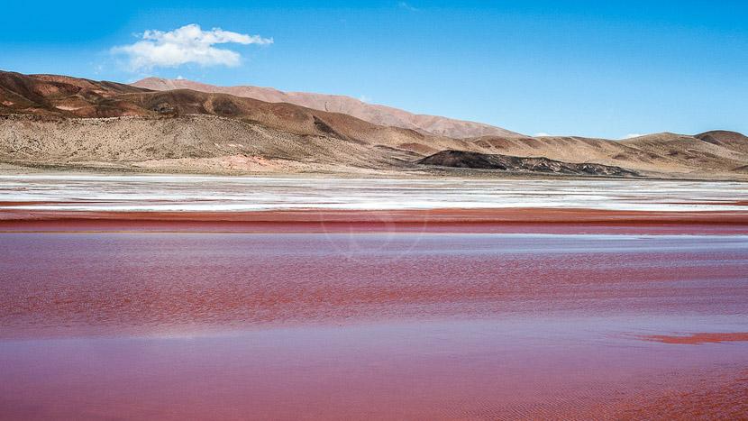 Découverte de Salta, Nord-Ouest argentin, Argentine
