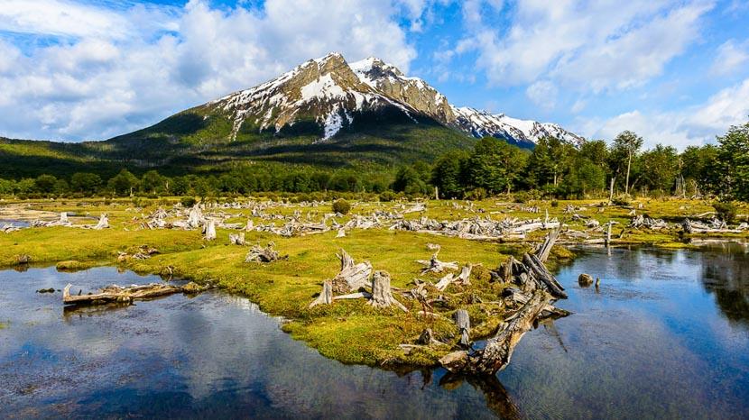 Excursion au parc national de la Terre de Feu, Ushuaia et Terre de Feu, Argentine