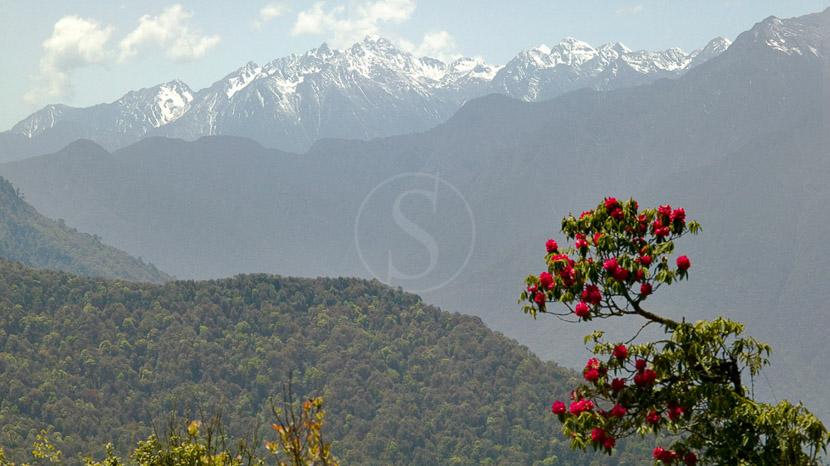 Vallée de Bumthang, Amankora Bumthang, Bhoutan © Paul Spierenburg