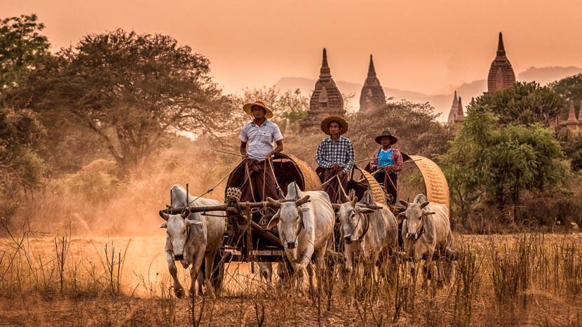 Bagan, Temples de Bagan, Birmanie © Shutterstock