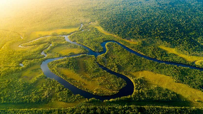 Brésil, Forêt Amazonienne, Brésil
