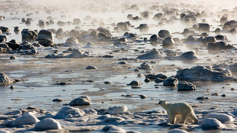 Churchill et la baie d'Hudson, Seal River Lodge, Canada © Churchill Wild