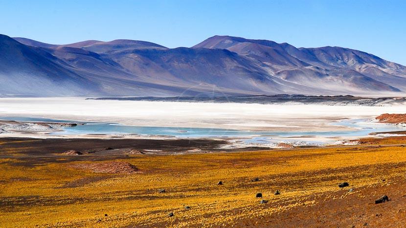 Salar d'Atacama, Désert de l'Atacama, Chili © Alain Pons
