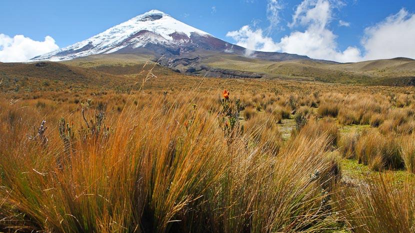 Equateur, Volcan Cotopaxi, Equateur