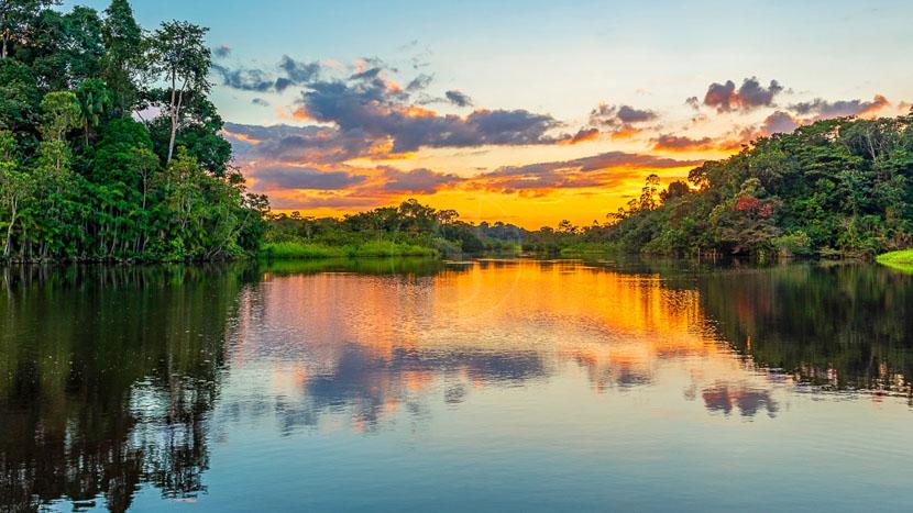 L'Amazonie équatorienne,