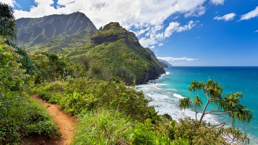 Hawaï, Kilauea Trail, Hawai © Shutterstock