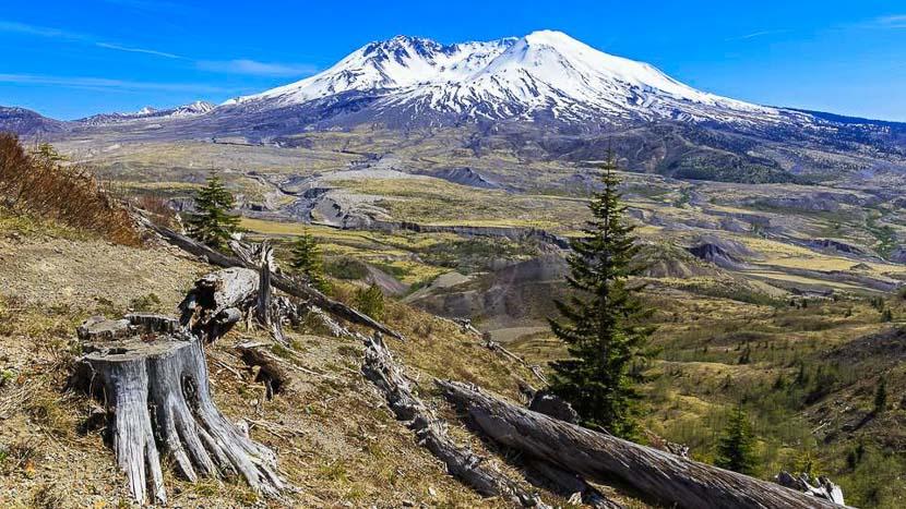 Parc National de Mont St Helens, Mont St. Helens, Etats Unis