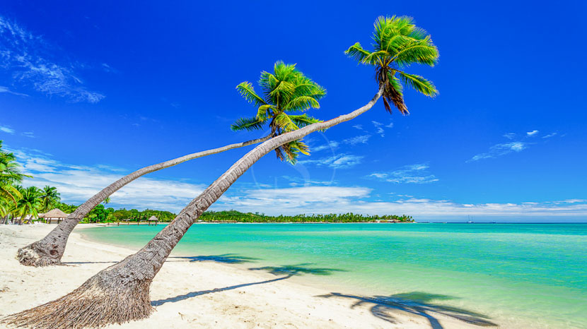 Iles Fidji, Iles Fiji © Shutterstock