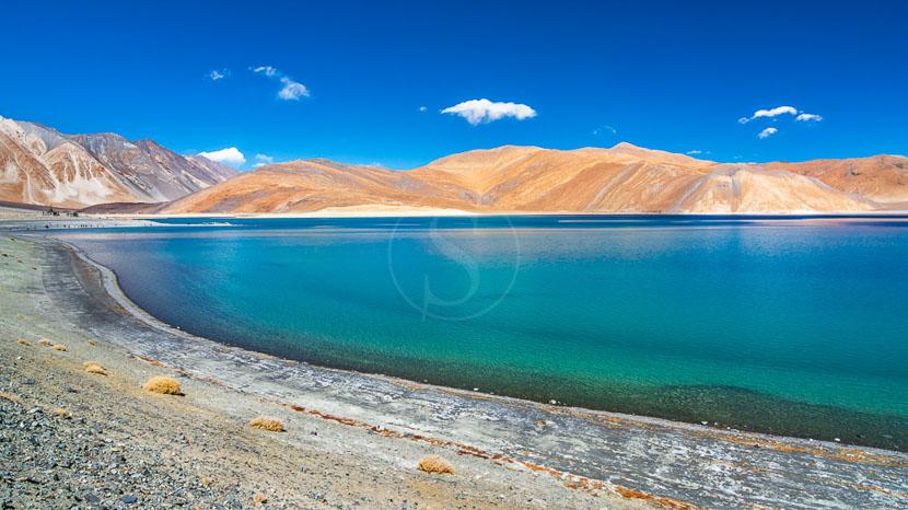 Ladakh, Lac Pangong près de Leh, Inde