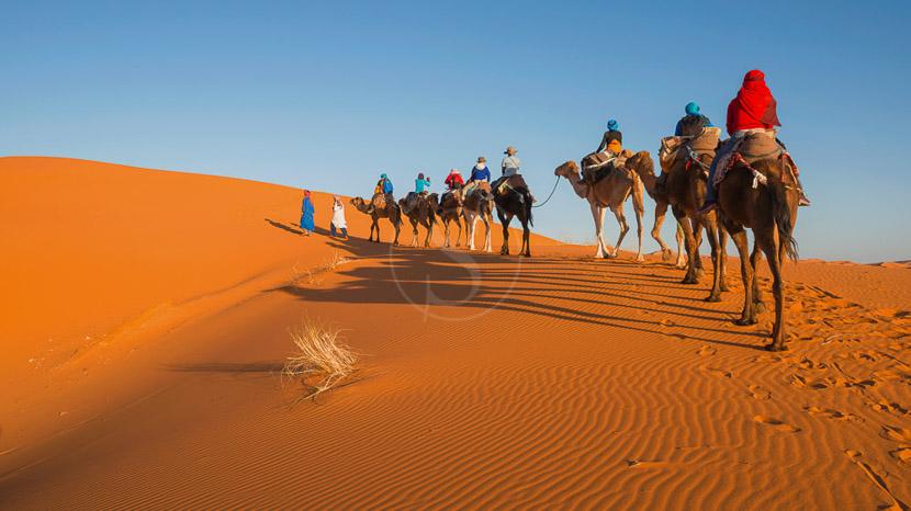 Les dunes de Merzouga, Merzouga, Maroc © Shutterstock