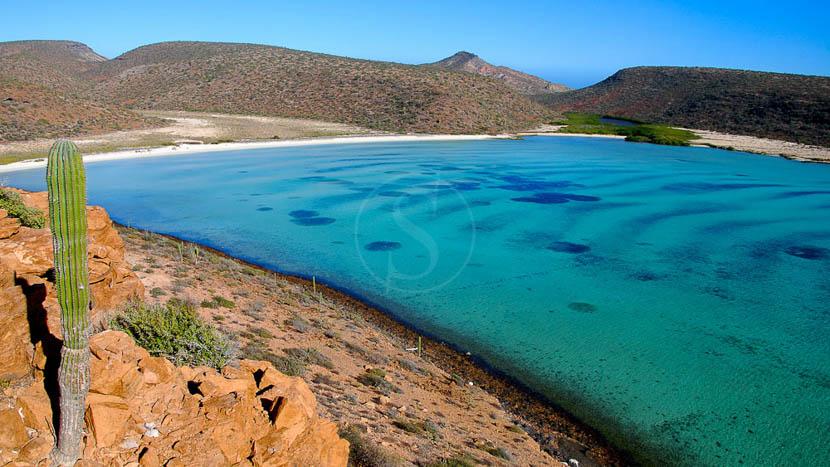 Excursion aux Islas Coronado, Espiritu Santo Basse Californie, Mexique © JC Arbonne