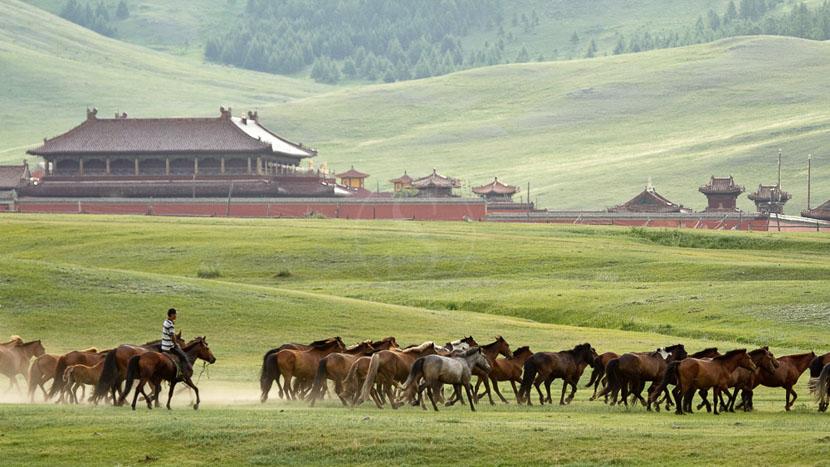 Monastère de Amarbayasgalant, Monastère de Amarbayasgalant, Mongolie