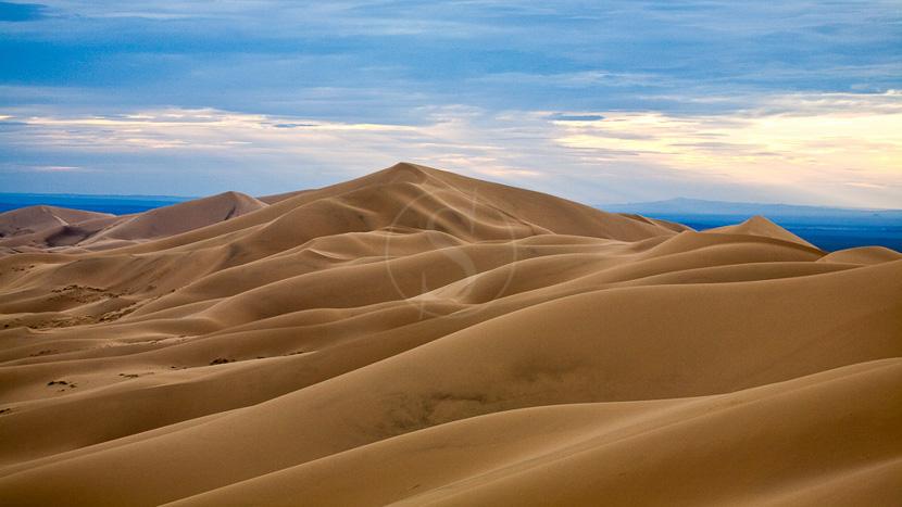 Désert de Gobi, Dunes de Khongor dans le Désert de Gobi, Mongolie