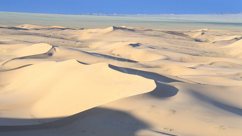 Randonnée à dos de chameau dans les dunes de sable du désert de Gobi, Dunes de Khongor, Mongolie © Bruno Morandi