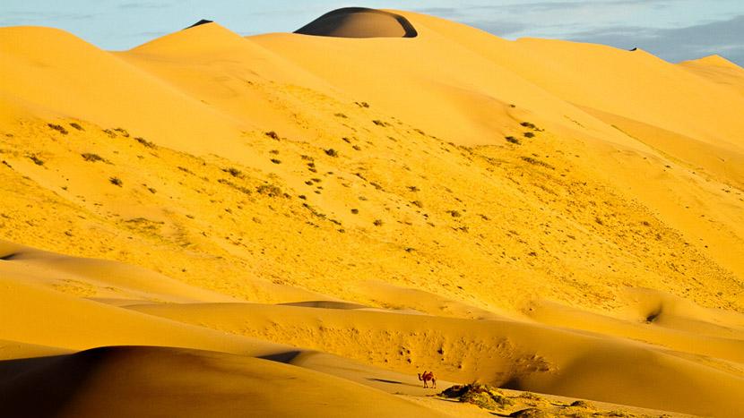 Randonnées dans les dunes de Khongor, Dunes de Khongor dans le Désert de Gobi, Mongolie