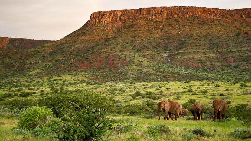 Damaraland, Damaraland Camp, Namibie © Dana Allen - Wilderness