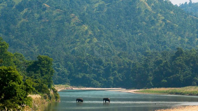 Parc national de Bardia, Karnali Lodge, Népal © Tiger Tops