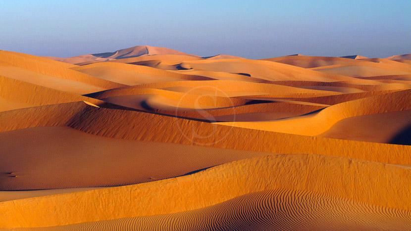 Wahiba Sands, Désert dans le Sultanat d'Oman