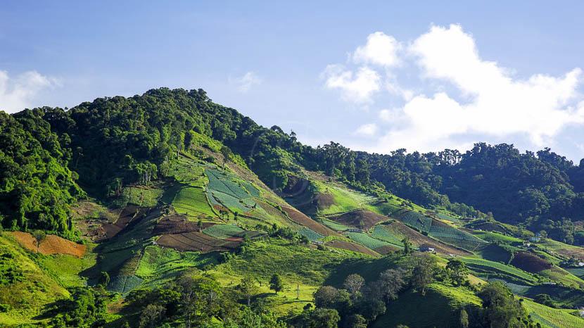 La région de Chiriqui, Région de Chiriqui, Panama