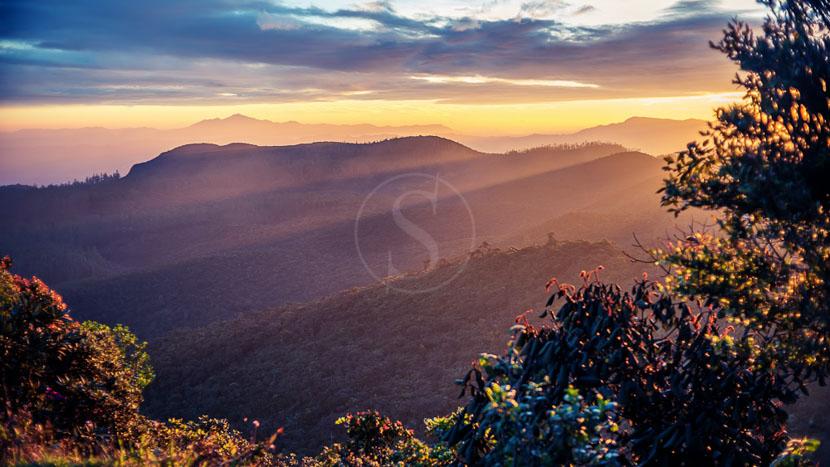 Sri Lanka, Parc national de Horton Plains, Sri Lanka