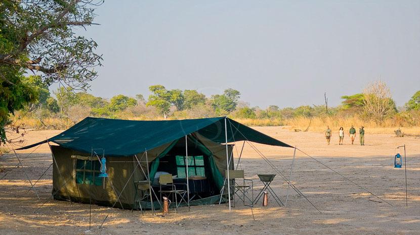 Zambie, Robin Pope Safaris, Zambie