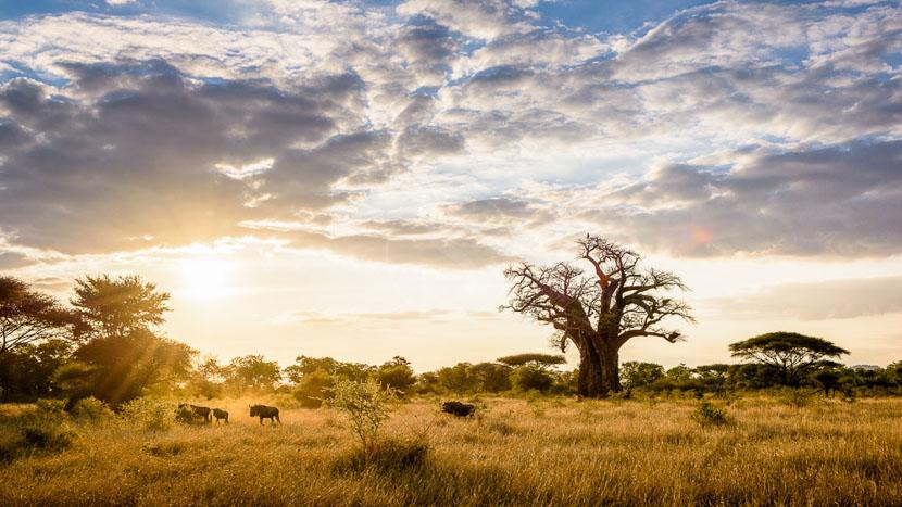 Zimbabwe, Singita Pamushana, Zimbabwe © Singita