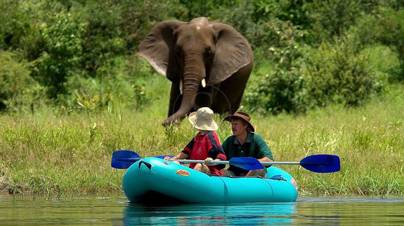 Zimbabwe, Activités à Victoria Falls